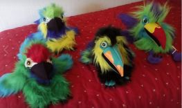 Polly and friends pics