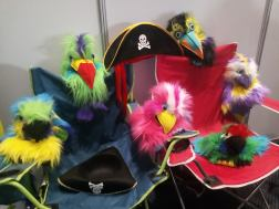 my flock at the SACBF