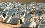 East coast refugee camp6